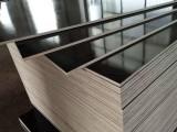 广西建筑模板最新报价