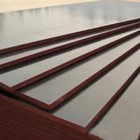 3x6尺建筑模板 廊坊金盛达木业