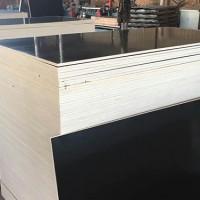 4x8尺建筑模板 廊坊金盛达木业