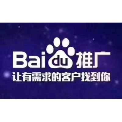 网站推广 百度竞价开户 河北廊坊百度关键词推广公司